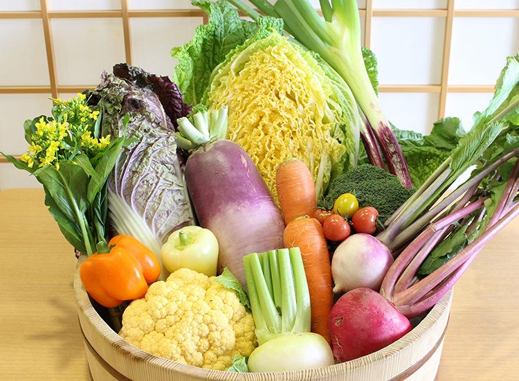 中能登町/カラー野菜